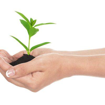 How to grow in faith